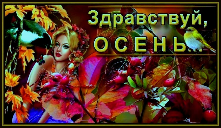 Y-OSEN-DEVA-OSEN-1-IN.jpg