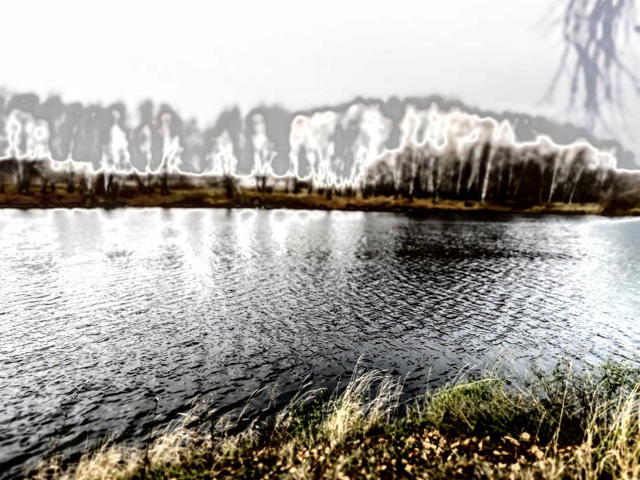 IMG_1133.jpg