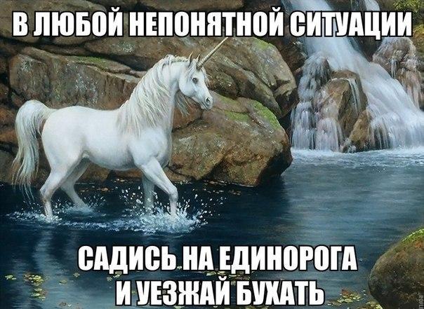 132091597_MDR9YhiP11s.jpg