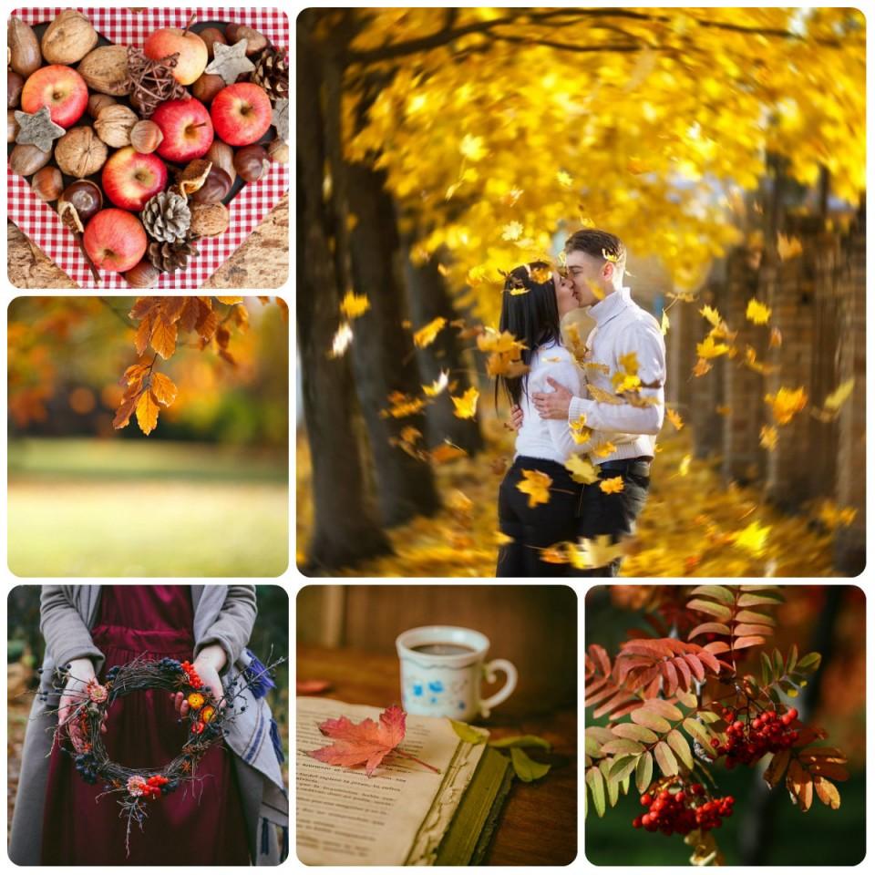 collage9.jpg
