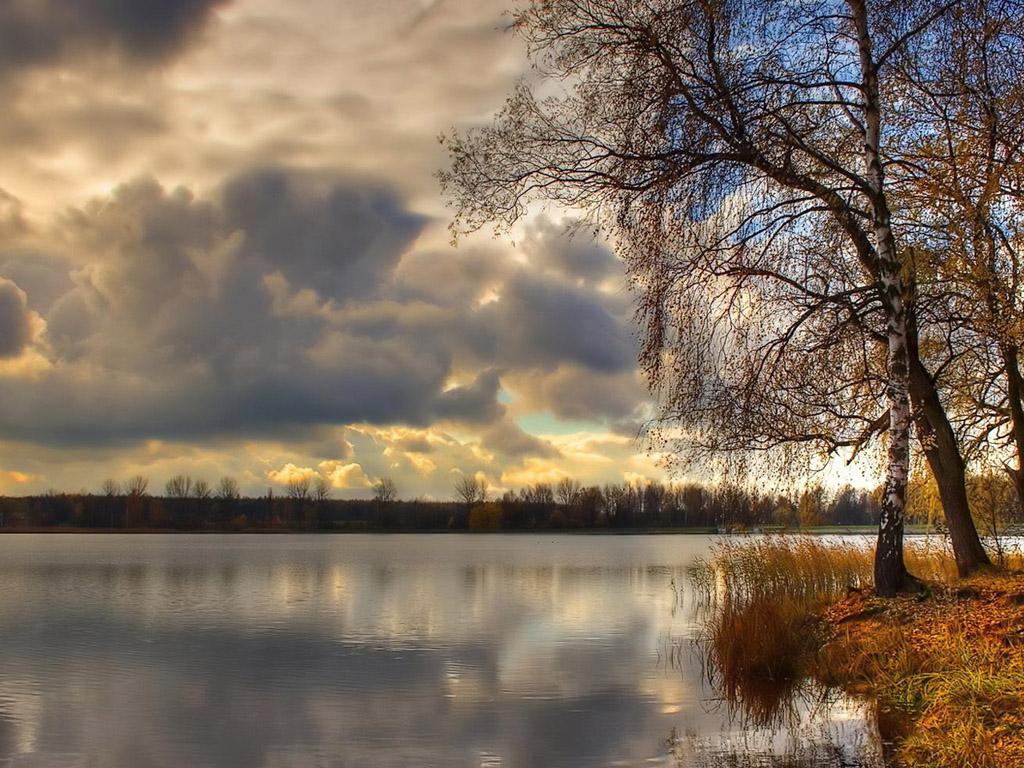 autumn_2_8_1024x768.jpg